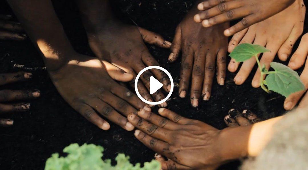 Partnerships Produce Sustainability